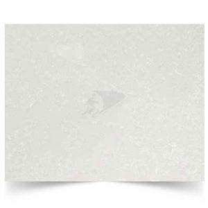 Shell White